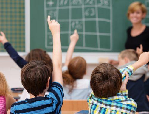 Consommation d'électricité et de combustible dans l'enseignement