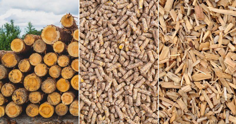 Chaudières bois-énergie