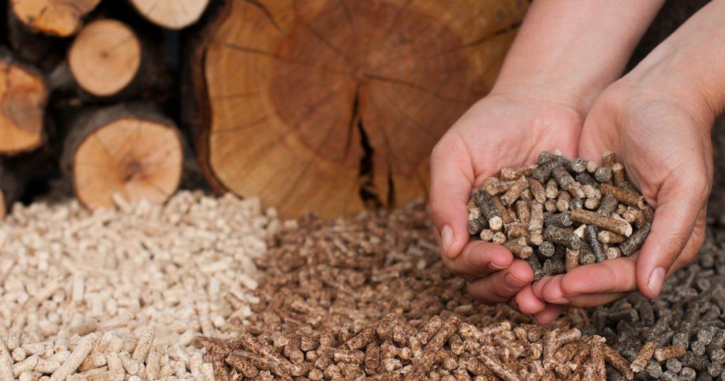 Stockage et l'alimentation du bois-énergie