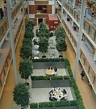 Photo lumière naturelle de l'atrium.