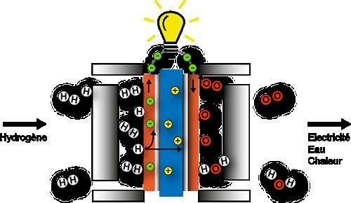 Schéma principe pile à combustible.