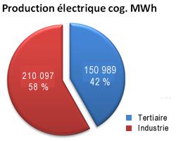 Camembert production électrique cog. MWh