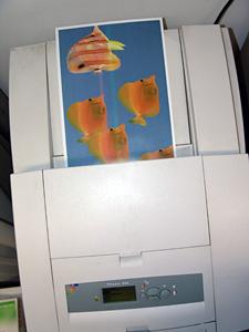 Choisir les imprimantes