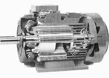 Photo moteur à cage d'écureuil.
