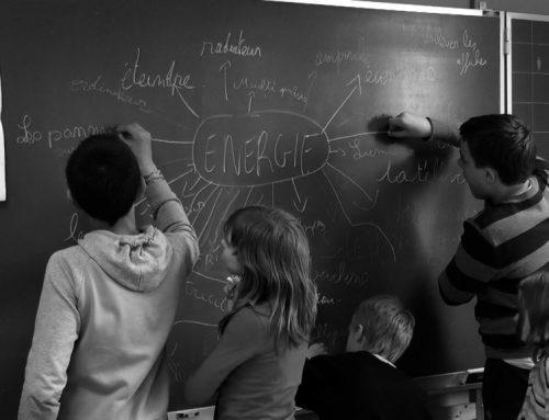 Sensibilisation dans les écoles : ressources externes